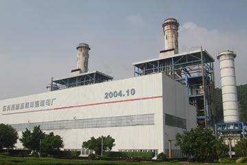 東莞深能源樟洋電力有限公司1