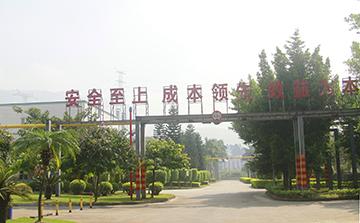 東莞深能源樟洋電力有限公司3