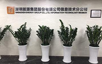 深圳能源集團股份有限公司信息技術分公司1